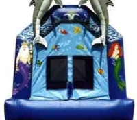 Mermaids & Dolphins Moonbounce