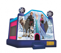 Small Frozen Bounce House
