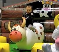 Baby Bull Ride