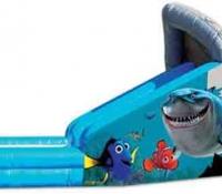 Nemo Water Slide