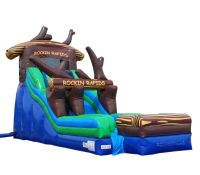 inflatable waterslide